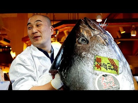 Tuna sells for £1 million Japan