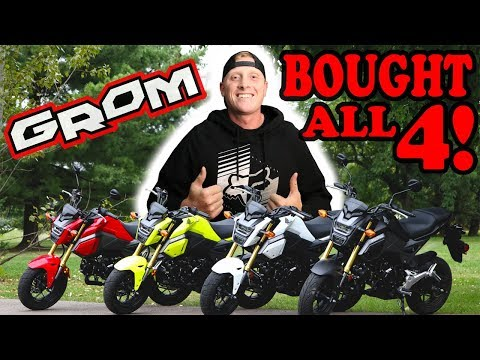 BUYING ALL 4 2018 HONDA GROMS!!!   Why you should buy a GROM!!   First LOOK!