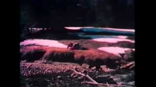 Os Sobreviventes dos Andes 1976 Dublado