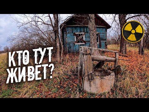 Нашел дом чернобыльского отшельника в заброшенной деревне. Как мы добываем еду в Зоне Отчуждения?