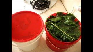 Помидоры в горчичном порошке на зиму  Salted tomatoes in mustard powder for the winter