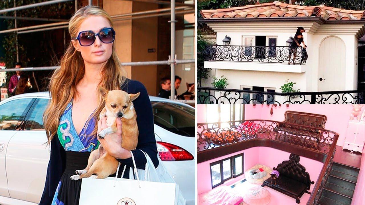 Најскапите куќички за кучиња во светот