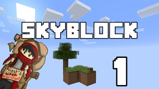 Skyblock Lets Play Ep.1 - We Begin