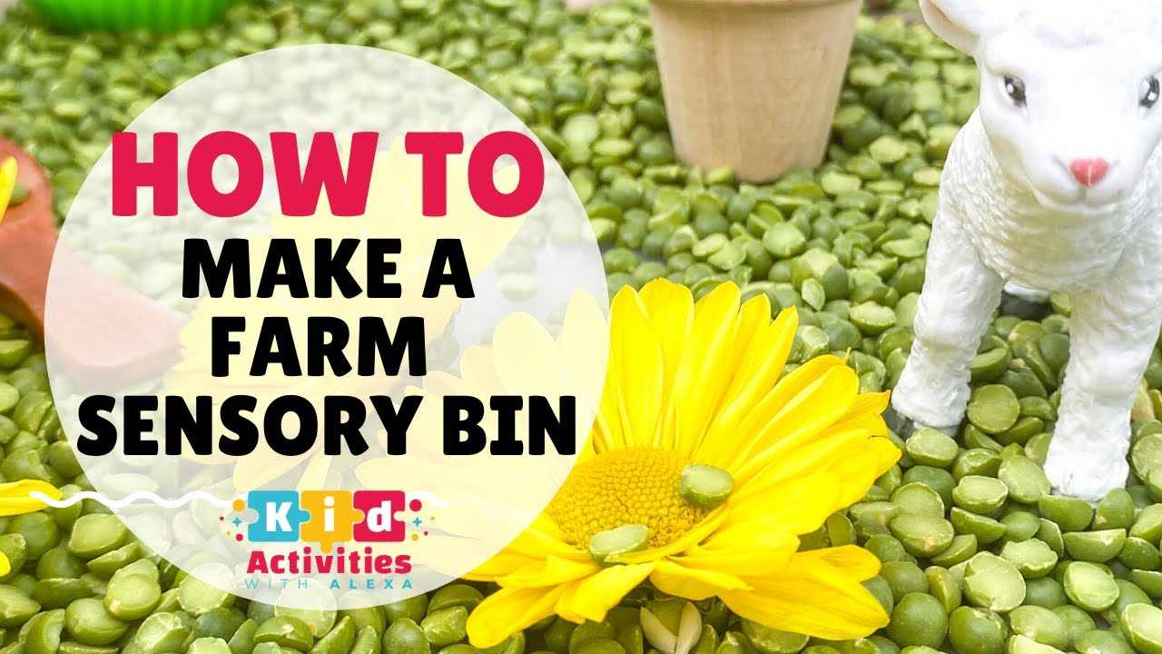 How to set up a Farm Sensory Bin