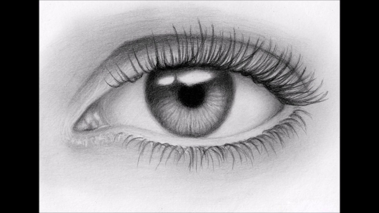Eye Sketches Hola Ibmdatamanagement Co
