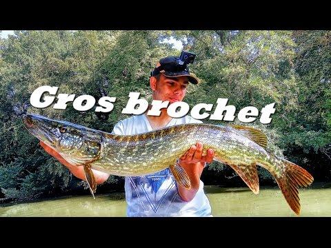 Peche Du Gros Brochet En Rivière - Ma Première Poutre !