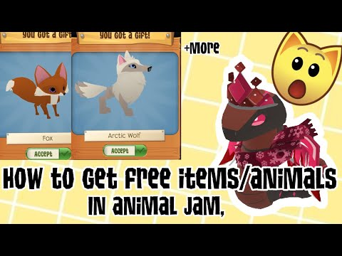 How to get free stuff in Animal Jam | dosent work