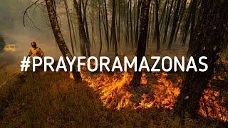 ESTO podemos hacer por el AMAZONAS / Posibles causas #PRAYFORAMAZONIA