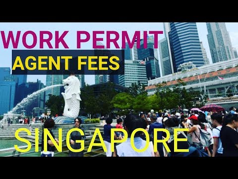work permit singapore agent fees