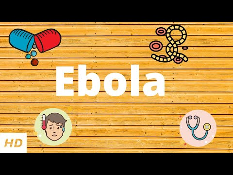 Ebola Virus Disease, Causes, Signs And Symptoms, Diagnosis And Treatment.