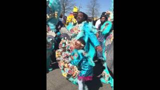 Black Feathers Big Chief Corey-Uptown Super Sunday