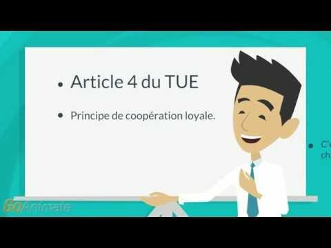Top 10 des articles à connaître de l'Union européenne