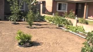 Raised Bed Garden Self Watering