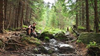 Karkonosze Mountains (Poland) - Dogtrekking