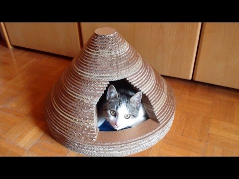 Thumbnail for Cat Video How To Build a Cardboard Cat House - DIY Home Tutorial - Guidecentral
