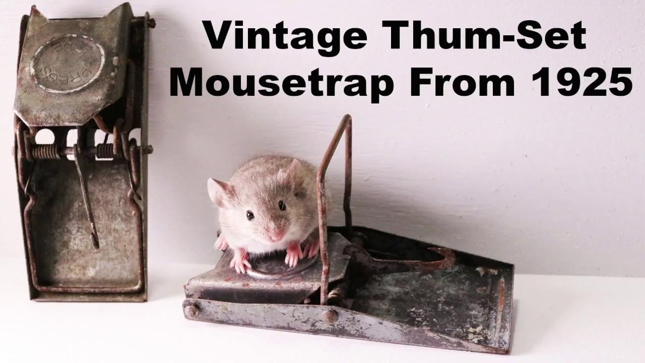 vintage-thum-set-mousetrap-from-1925-re-upload-mousetrap-monday