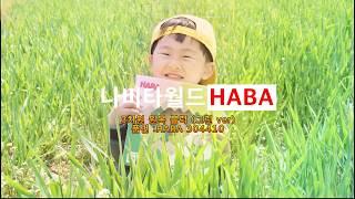원목교구/장난감 : 하바(HABA) 3차원블럭