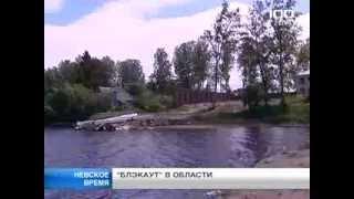 Воспроизводство. В Отрадное озеро выпустили 16 тыс мальков судака.