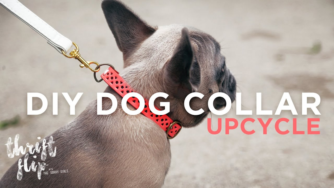 Dog Collar Tutorial Sewing