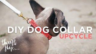 DIY DOG COLLAR AND LEASH | THE SORRY GIRLS