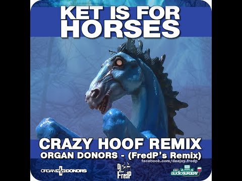 Ket is For Horses - DJ FredP Remix , Organ Donors