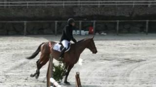 ♥ Rhum du Richemont- jumping horse  by J'Ai L'Espoir d'Elle