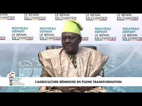 Benin en Chantier - L' agriculture béninoise en pleine transformation