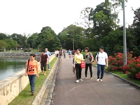 Morning Walk 2009