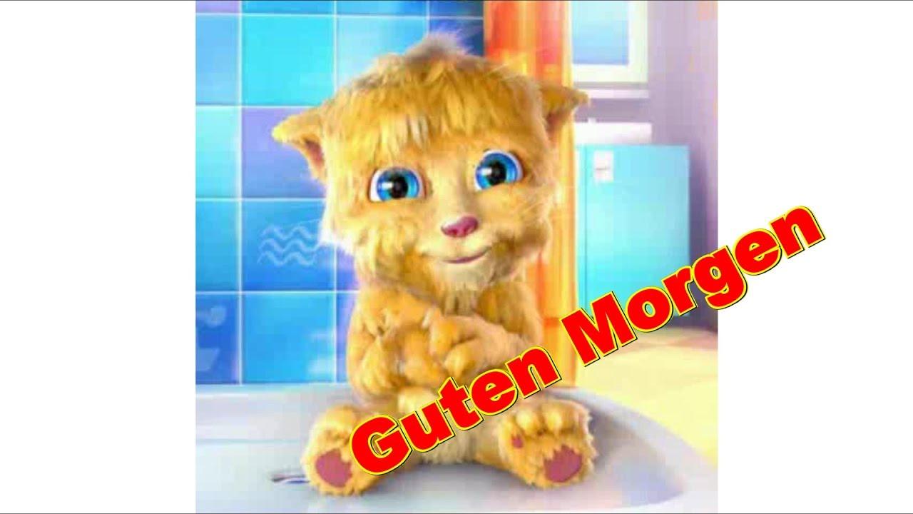 guten morgen mit kaffee gr 252 223 e f 252 r einen sch 246 nen tag talking sprechende katze