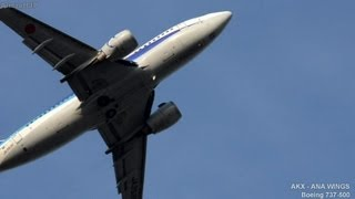 航空会社:ANAウイングス(AKX/EH) 機種:ボーイング737-500 機体番号:J...