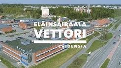 Töitä eläinlääkäreille ja hoitajille eläinsairaala Vettorissa!