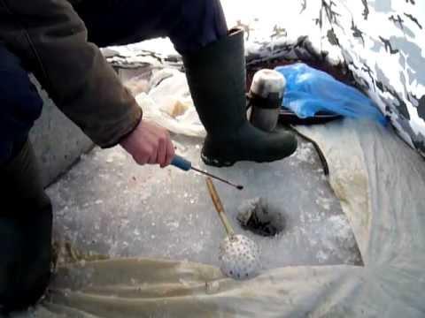 зимняя ловля леща на озере сиг