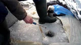Рыбалка но озере Сиг.