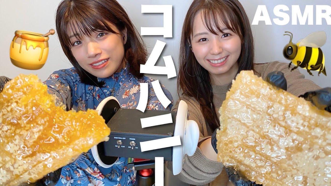 【ASMR】ASAKIさん蜂の巣(コムハニー)を食べる音🍯【咀嚼音】