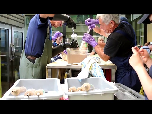 Marin's Marine Mammal Center is Saving  Seals! - Lauren Gee's Earth Day Special