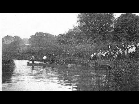 Matawan Creek Shark Attack 1916