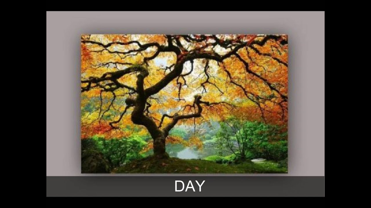 Maple Tree Glow In The Dark Canvas Wall Art Youtube