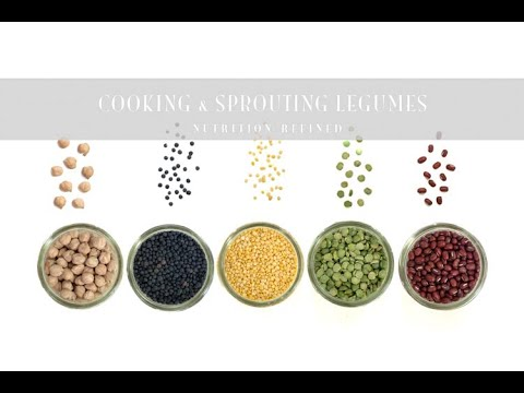A Comprehensive Guide to Cooking & Sprouting Legumes (Beans, Lentils, Chickpeas) + Recipes