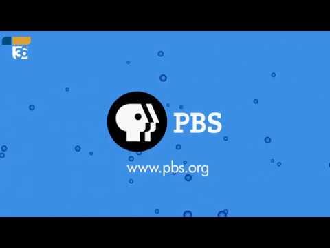 PBS Netflix 2017 logo