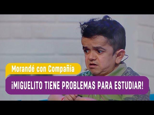 ¡Miguelito tiene problemas para estudiar!   Morandé con Compañía 2018