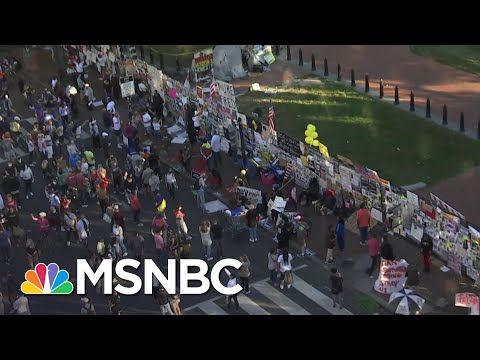 Crowds Gather For Second Day at Black Lives Matter Plaza After Biden Victory Projected   MSNBC