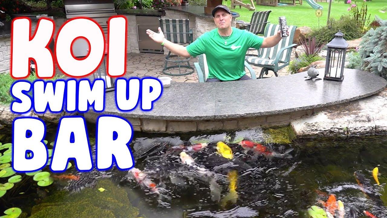 A Koi Bar In The Ultimate Backyard Pond Youtube