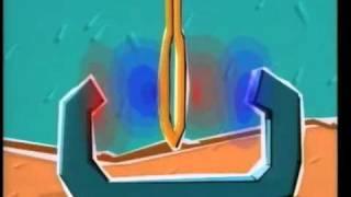 Le Moteur électrique | electromotor