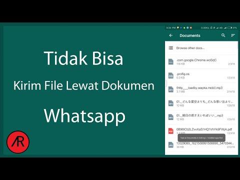 Ini Dia Cara Ampuh Mengatasi Whatsapp Tidak Bisa Mengirim Dokumen Di Hape Xiaomi Youtube