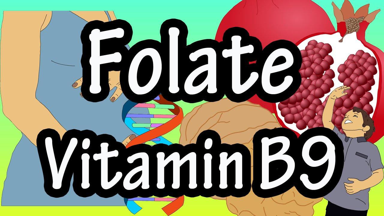 vérszegénység b9-vitamin