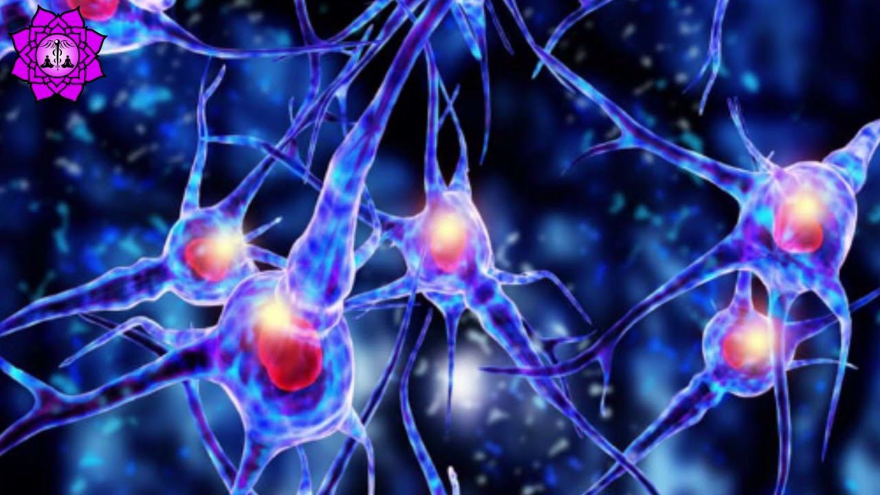 Damaged Brain Healing & Nerve Regeneration | Brain Waves ...