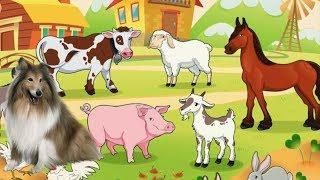 КАКИЕ ЖИВОТНЫЕ ЖИВУТ НА ФЕРМЕ? музыкальный мультик. Ферма Микки все серии про животных  подряд