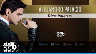 Alejandro Palacio - Dime Pajarito (Audio)