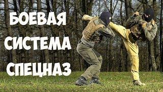 Жестокие удары, куда их наносить. Боевая система Спецназ: НКВД - КГБ