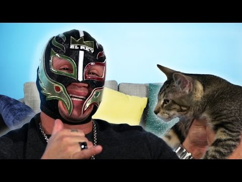 Rey Mysterio Gets Surprised With Rescue Cats